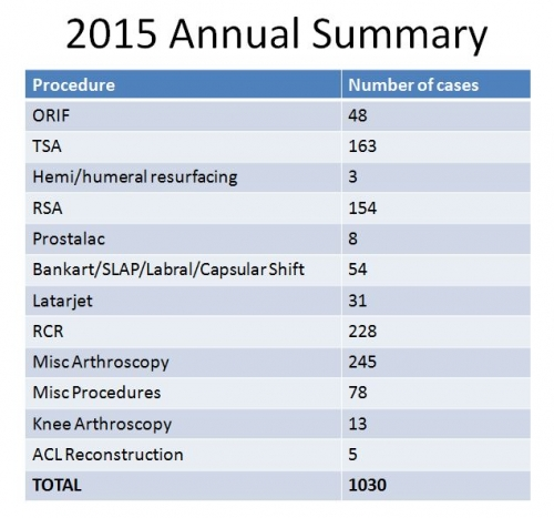 2015 Annual Summary of cases chart BSI