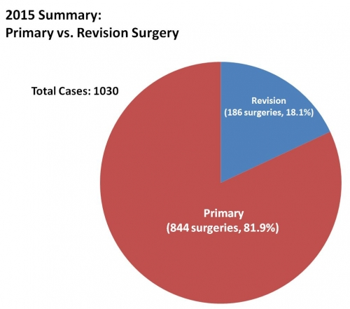 2015 BSI summary primary v revision pie chart